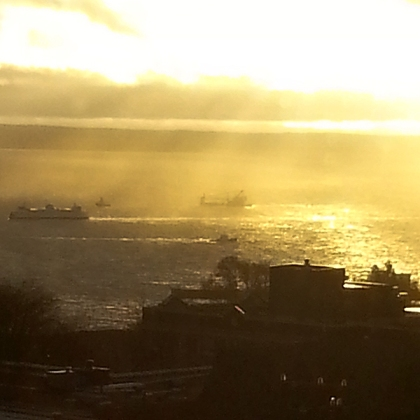 Puget Sound view from Grace's place! ♥